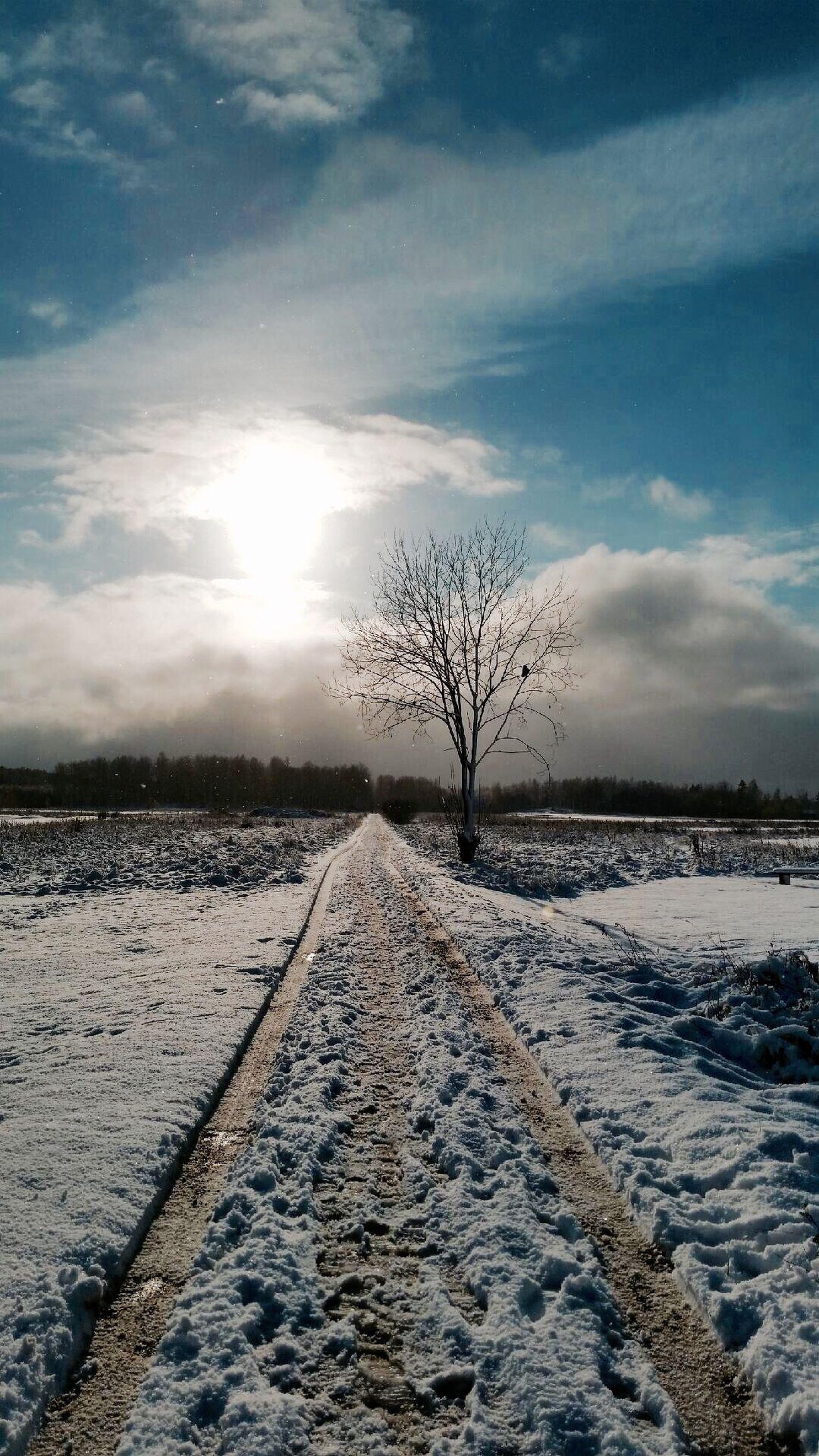 Winter EyeEmBestPics EyeEm Nature Lover Nature_collection Eye4photography  Eye4delight EyeEm Best Shots EyeEm Best Shots - Nature Nature Photography Snow