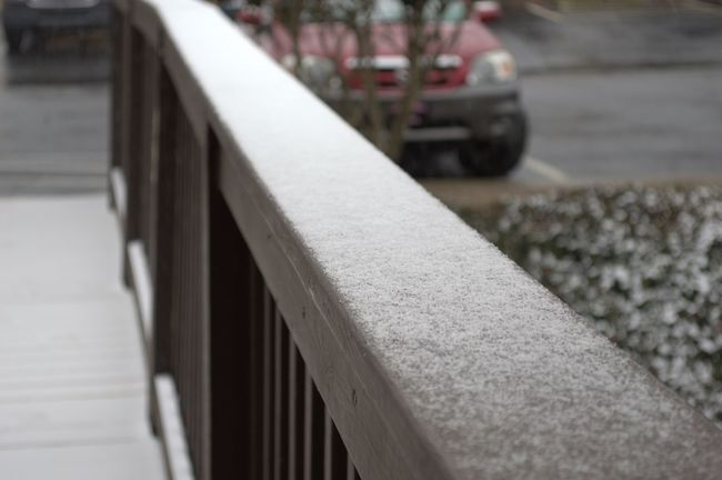 I shot these photos back in January of 2014 at the old apartment in Taylors, SC. First snow of 2014 Focus On Foreground Snow Snow ❄ Snowing Snow Covered Dusting Surface Level Nikon D3200 Nikonphotography Documentingyears MyPhotography Mypointofview Greatergreenvillesc