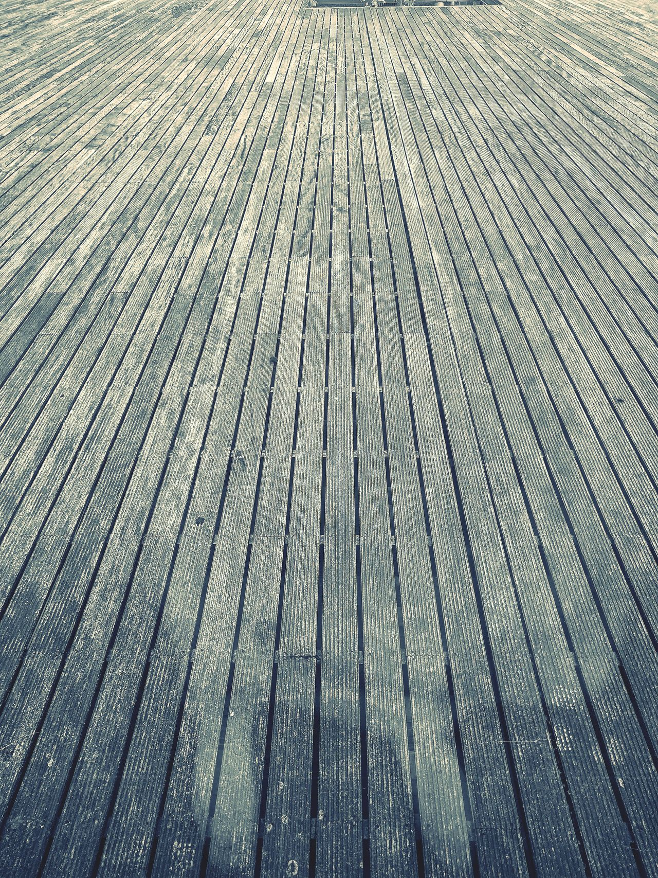 Full Frame Backgrounds Pattern Day Low Angle View No People Nature Outdoors Beauty In Nature Close-up Boardwalk Photography Boardwalk Boardway Boardwalks Boardwalk Scapes Weathered Weather Wood Weather Board Weathered Wood