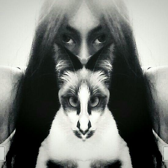 Cat Odette Me Love