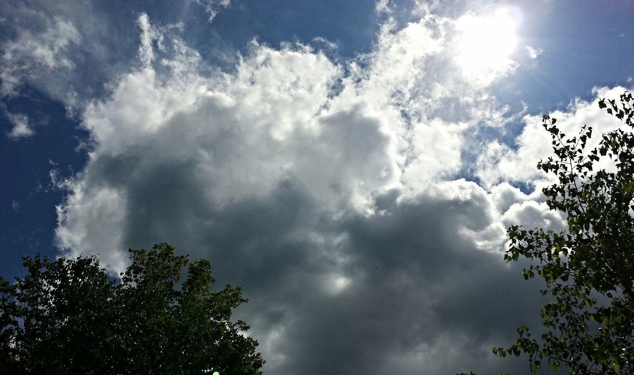 Sun_collection, Sky_collection, Cloudporn, Skyporn Cloudlovers Cloudscape Orb? Skyviewers Skylover