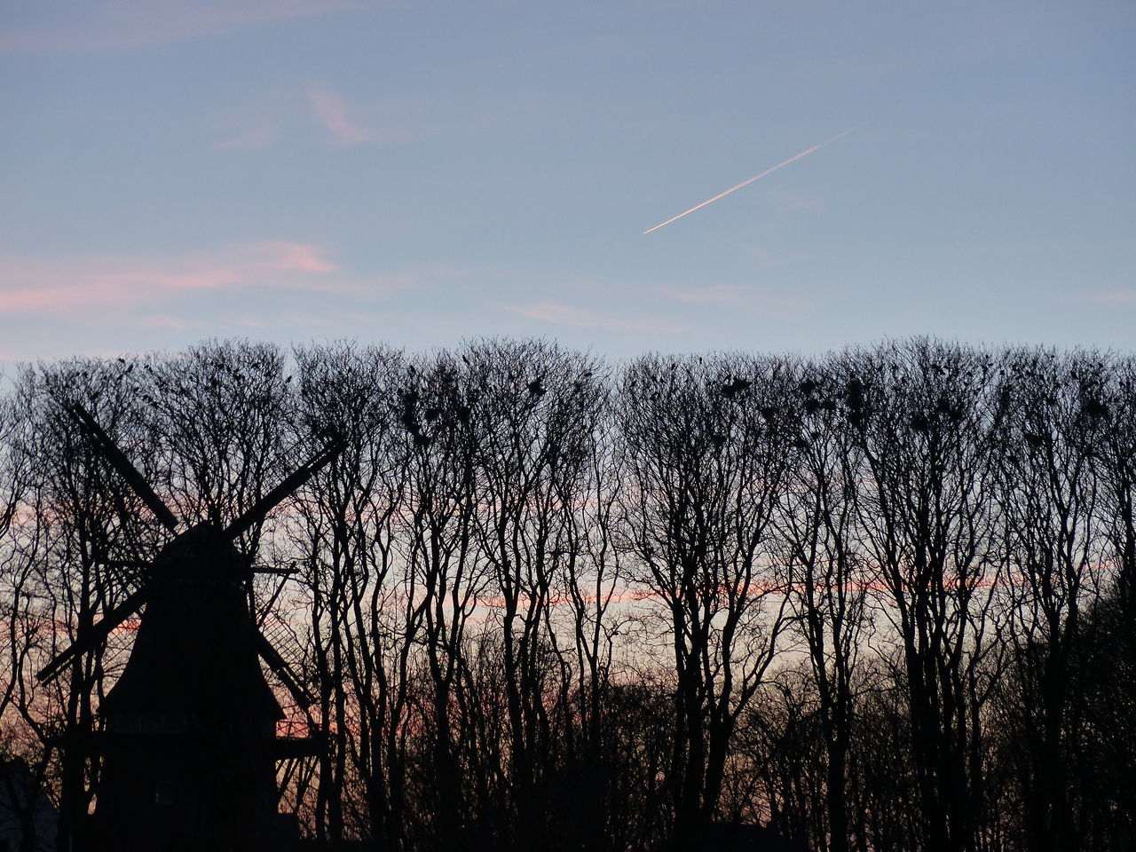 nature, bare tree, tree, silhouette, beauty in nature, sunset, outdoors, scenics, tranquility, no people, sky, vapor trail, day, branch, contrail