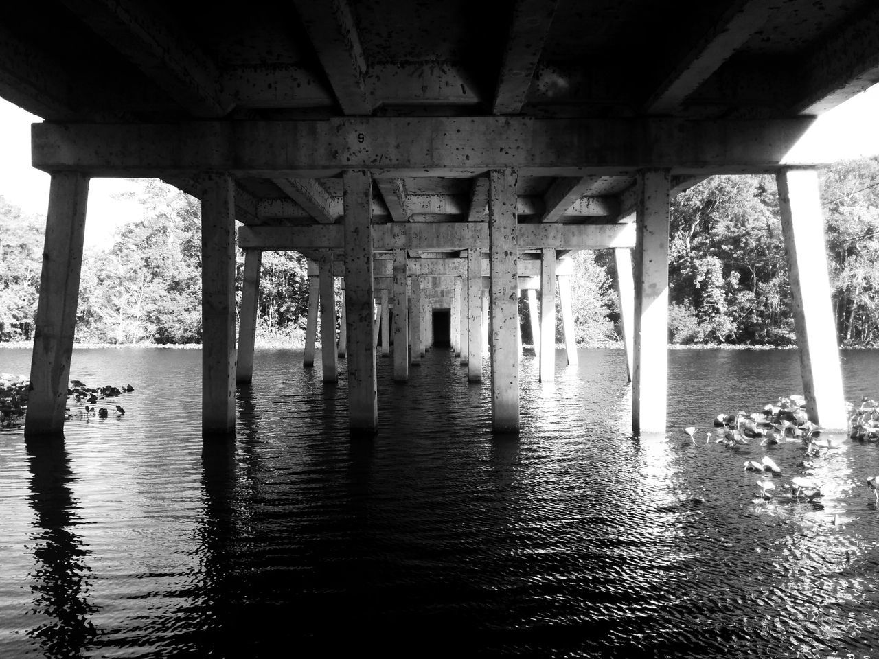 Bridge Black And White Photography Under The Bridge Water Reflections Riverside Playing With The Shadows Lines And Angles Lines And Patterns Ripples In The Water Concrete Columns Columns And Pillars
