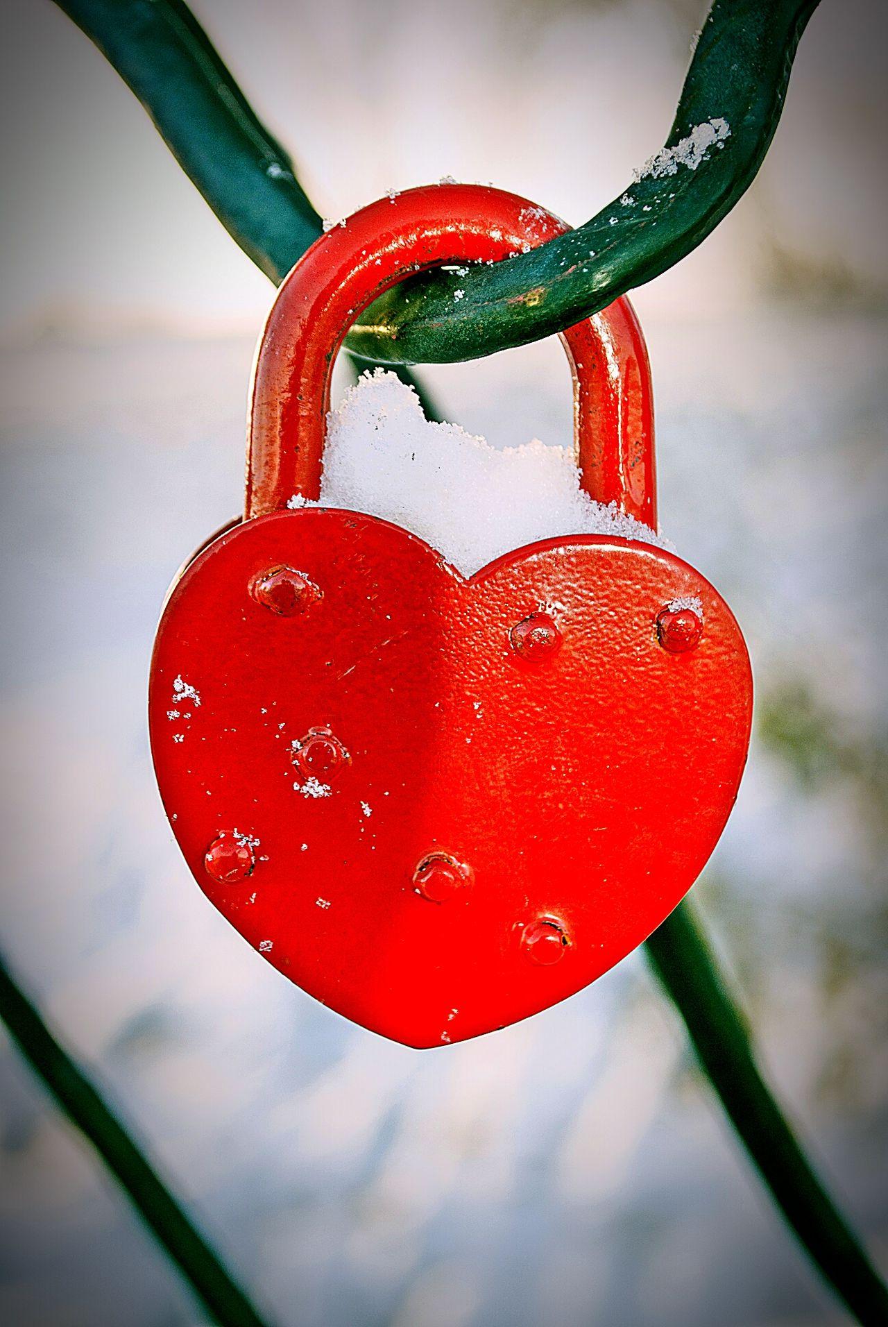 Red Love Winter Cold Temperature Lock Love Lock Padlock Winter Metal Love Red Padlocks Wedding Nature