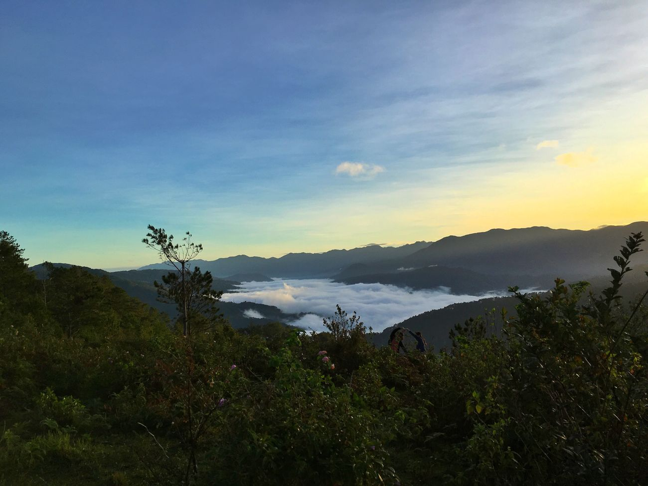 Sea of clouds. Mountain Tree Nature Beauty In Nature Sky Scenics Water Growth Idyllic Mountain Range Tranquility Outdoors Landscape Tranquil Scene Cloud - Sky Travel Destinations No People Forest Eyeem Philippines Sunrise_sunsets_aroundworld Sunrise Sunrise_Collection
