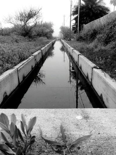 Landscapes With WhiteWall Greyscale Concrete Waterway