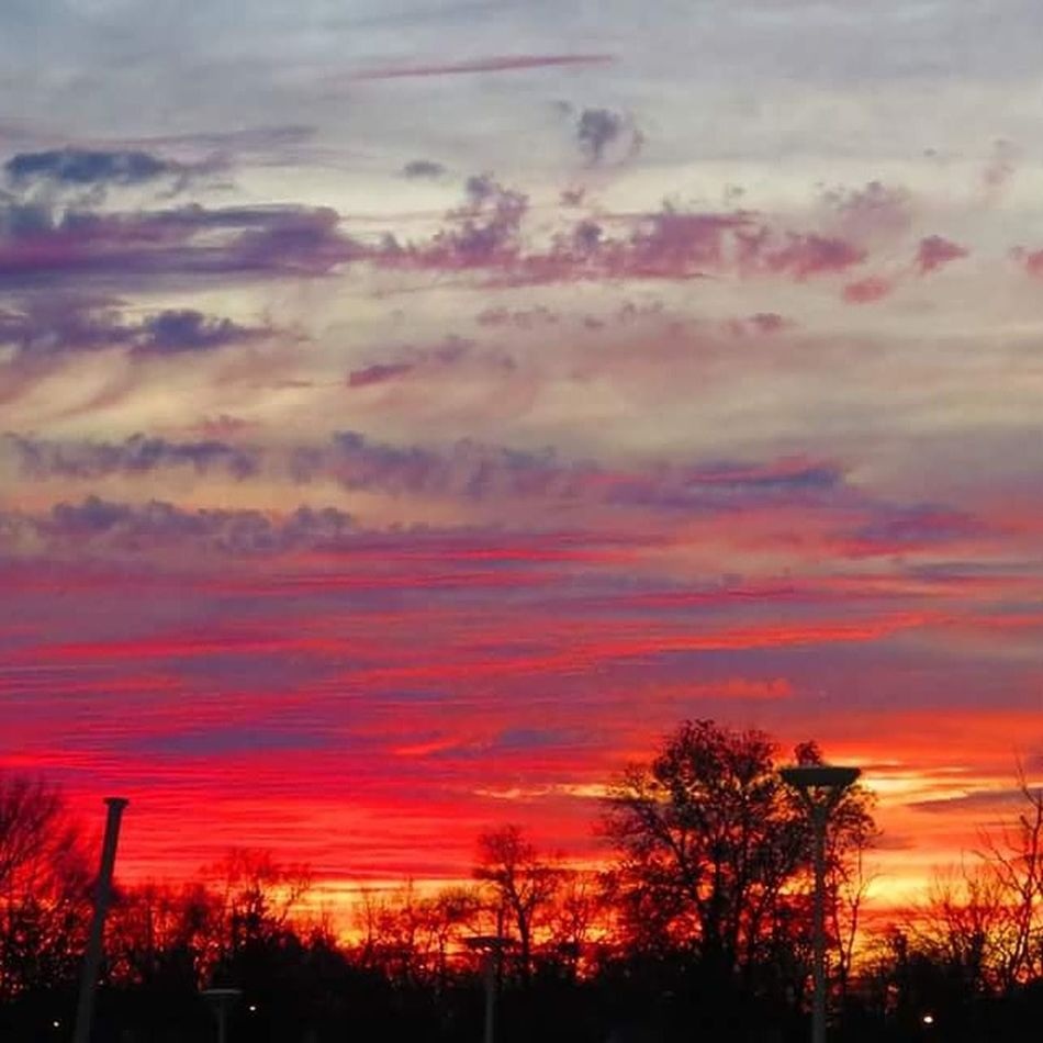 Candy Skies Sunset Tree Dramatic Sky Multi Colored Orange Color Silhouette Cloud - Sky Sky Scenics Nature Beauty In Nature Outdoors Tranquil Scene No People Red Tranquility Night Pink Purple Clouds Blue Evening Sky Fine Art Photography