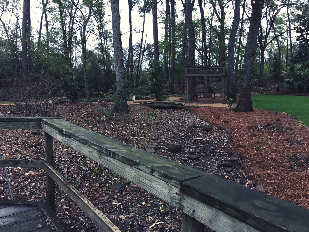 Rustic Woods | Nature Outdoors Nowhere