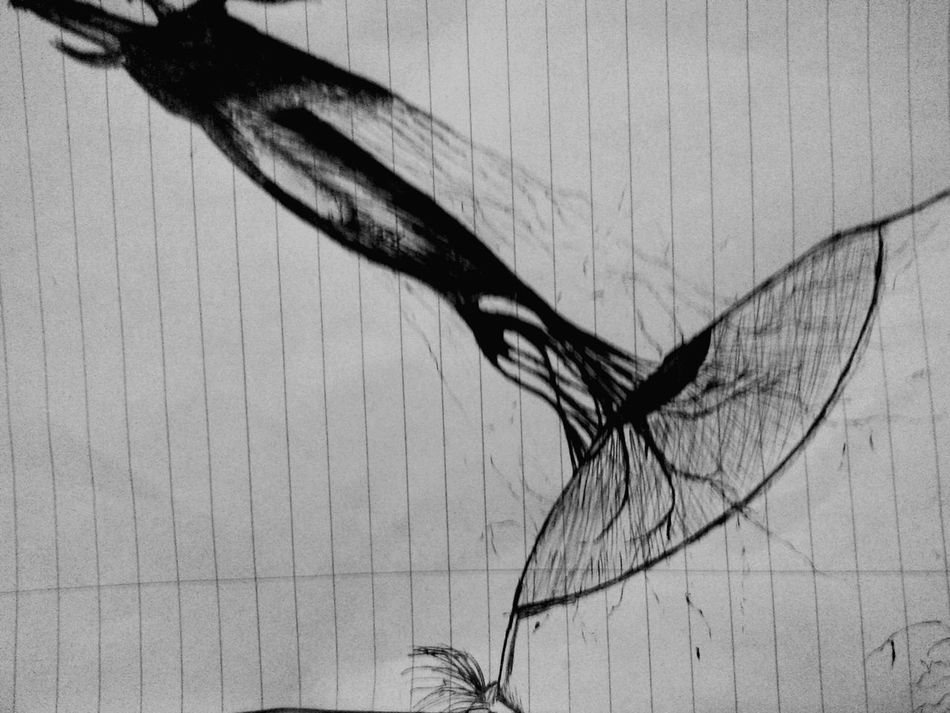 Blackandwhite Art Hidden Art Blacknwhite_perfection What We Do... Inked Art, Drawing, Creativity Pen Drawing Ink Drawing The Art Of Me Sketch Fantasy Eyes