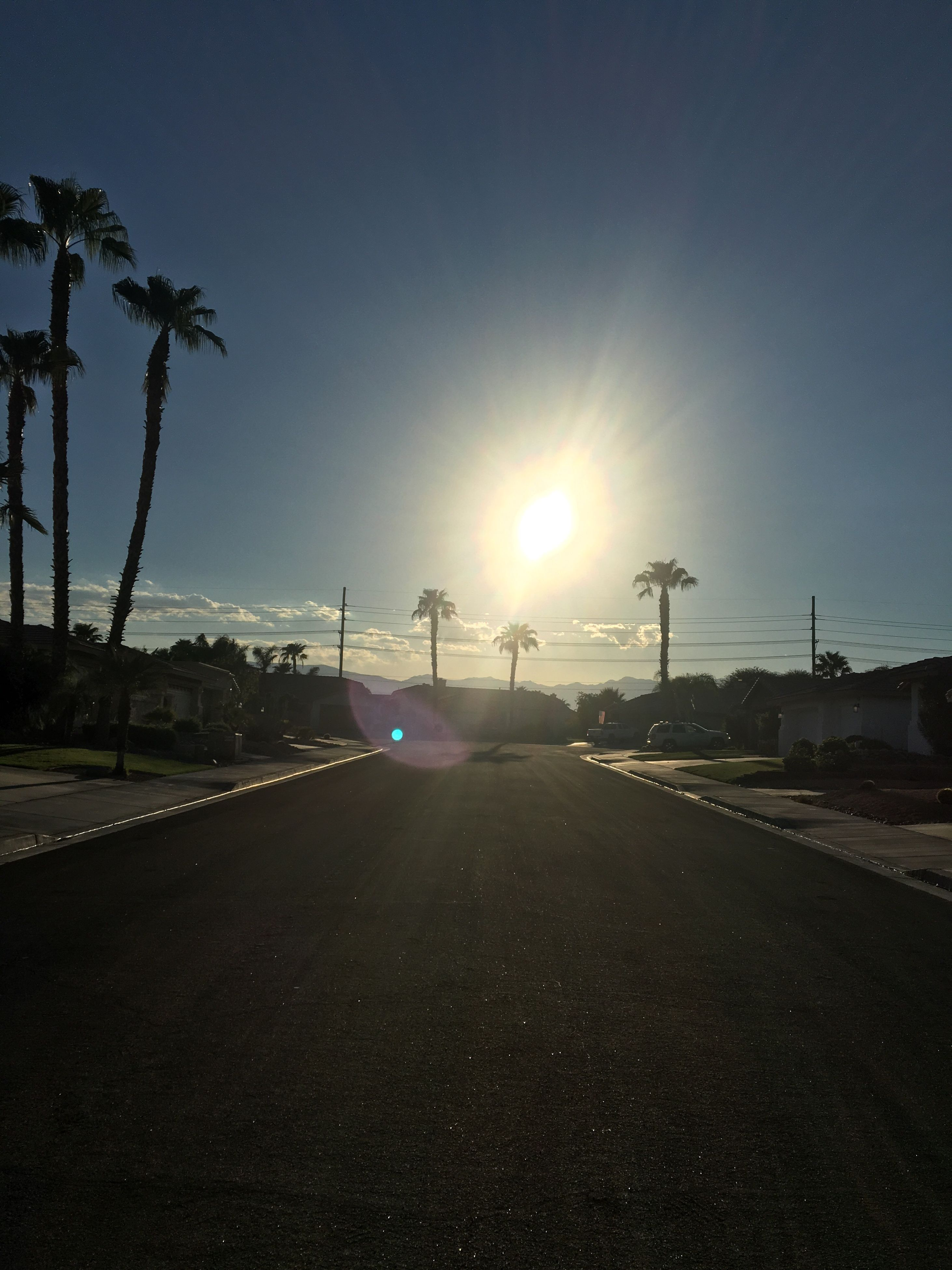 road, sun, the way forward, palm tree, diminishing perspective, street, clear sky, long, solitude, vanishing point, outdoors, tranquil scene, sky, country road, day, scenics, surface level, empty road