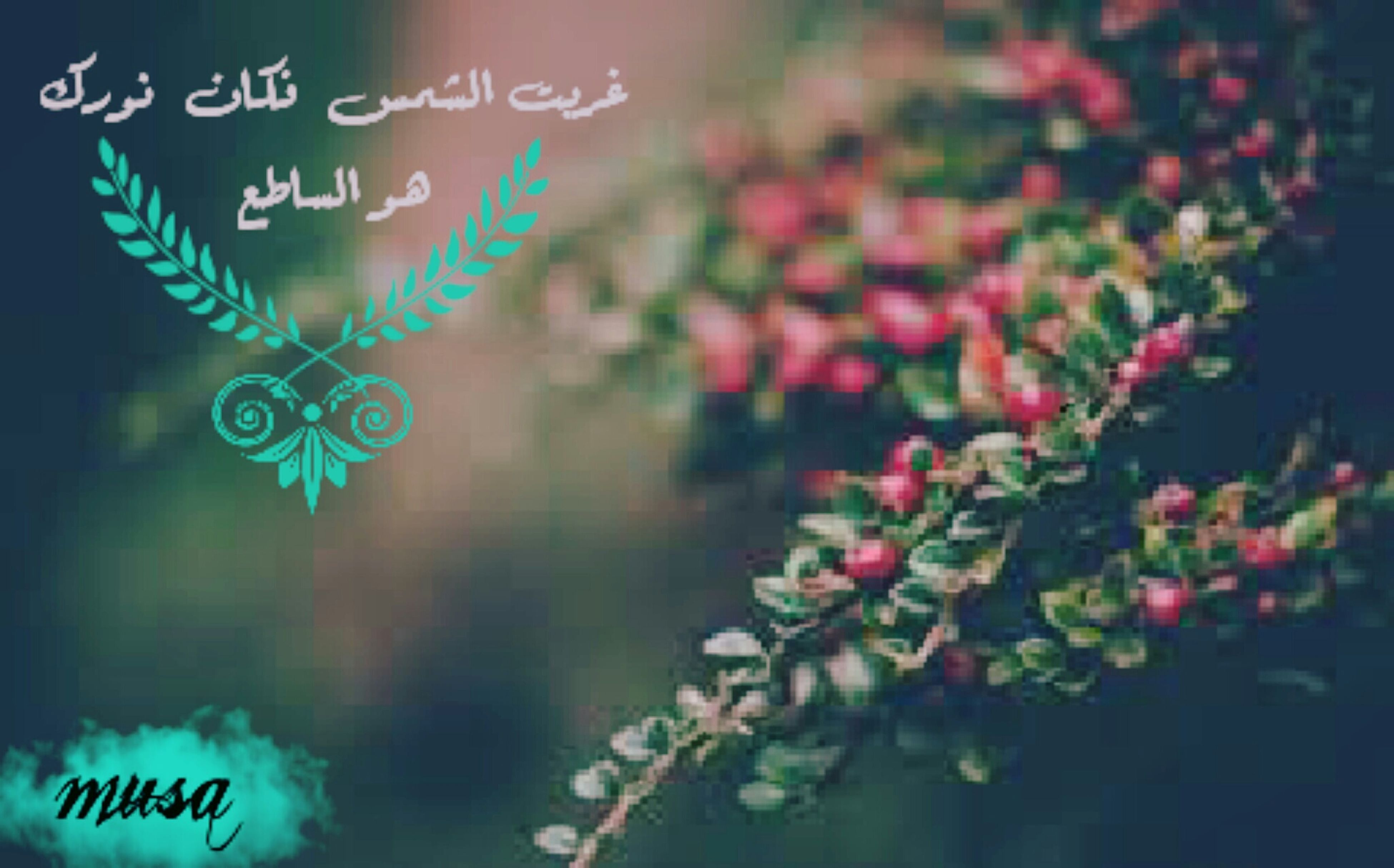 text, western script, communication, focus on foreground, close-up, illuminated, multi colored, hanging, night, no people, indoors, selective focus, non-western script, decoration, red, lighting equipment, green color, variation