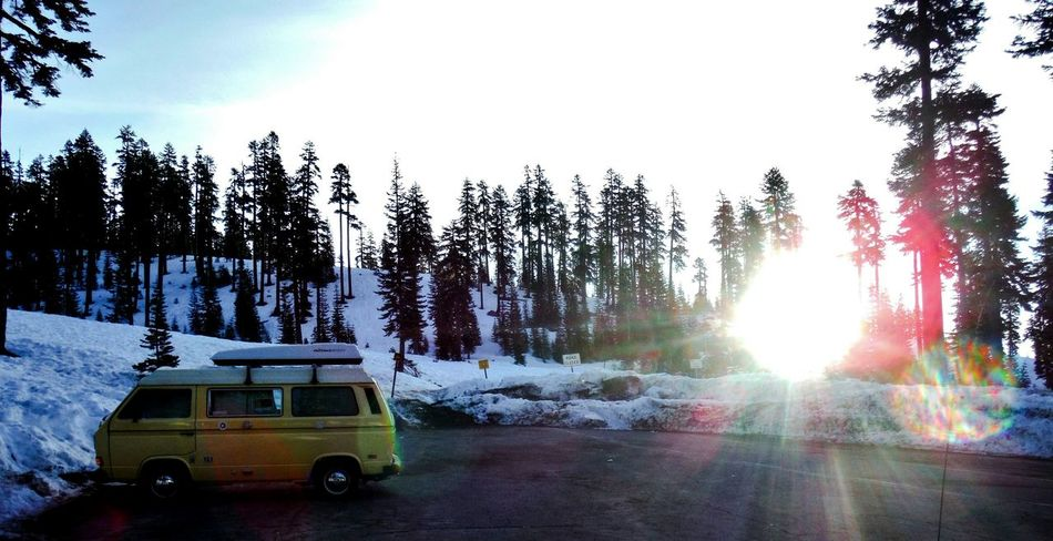 Early morning up at Mt. Shasta, ready to explore the beautiful Snowy Mountain. Mount Shasta California Sunrise Early Morning Early Morning Sunlight Rising Sun New Day Snow Day Snow Old Van Vintage Van Yellow Van End Of The Road Snow Covered Morning Light Mt Shasta Mt Shasta California Trailhead Snow Adventure Cold Morning Sun And Snow The Drive