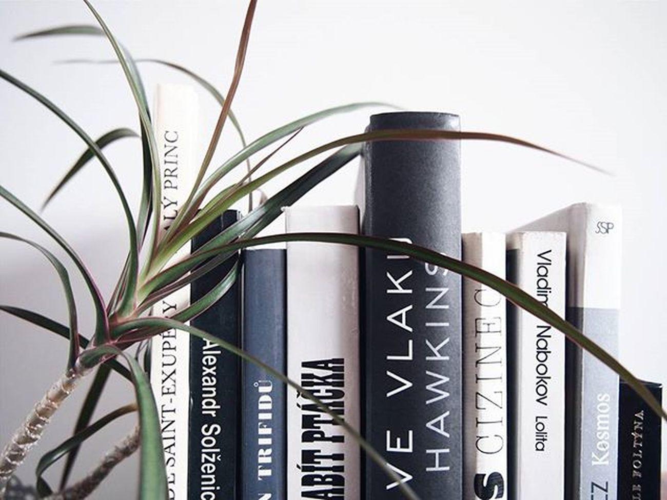 ❤⏩❄📖❄⏪❤ Book Bookstagram White Igers Igerscz VSCO Vscocam Picoftheday Instamood Booklover