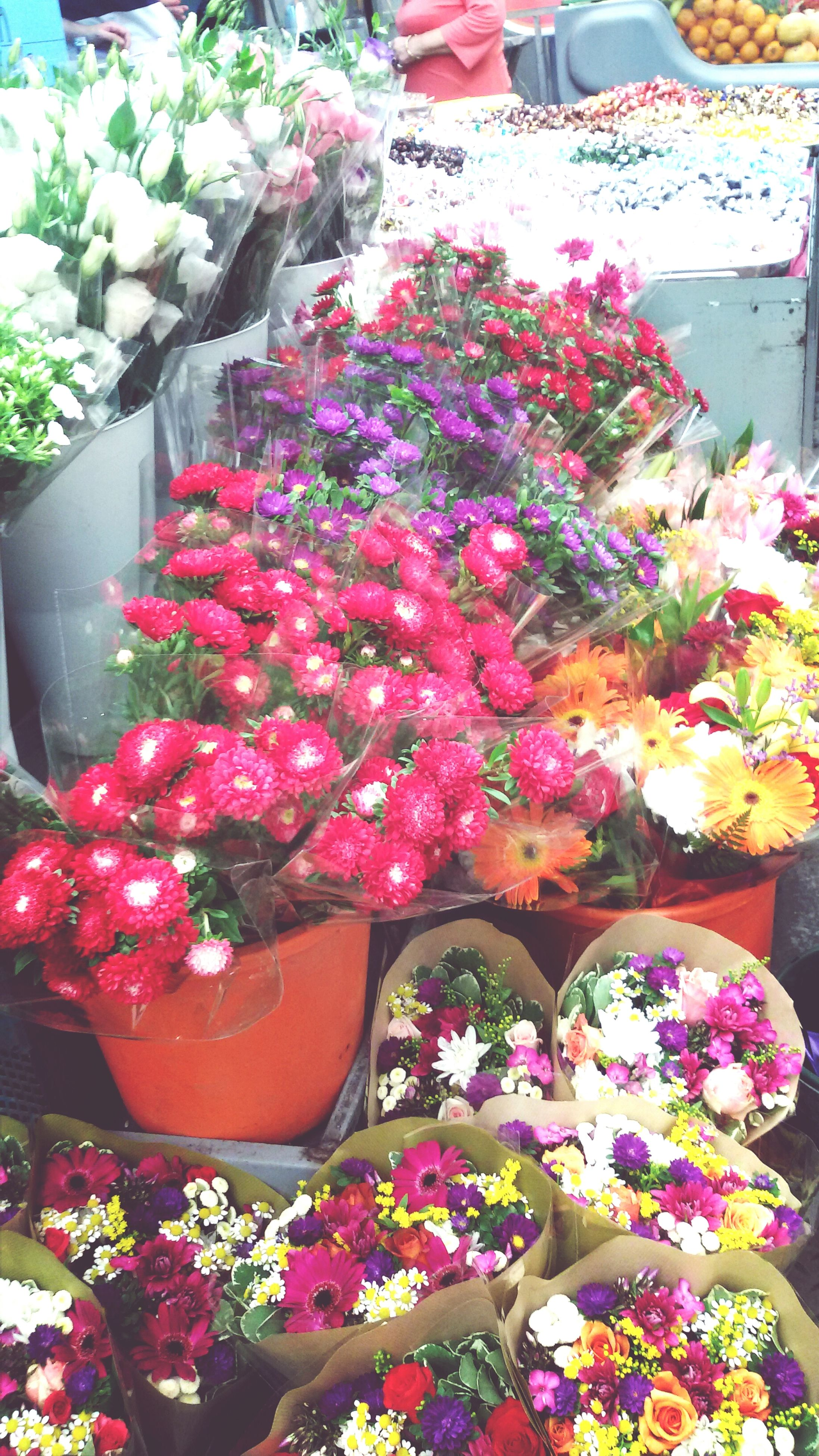 flower, freshness, for sale, retail, variation, abundance, choice, market, market stall, multi colored, fragility, large group of objects, bouquet, pink color, petal, plant, potted plant, display, store, growth