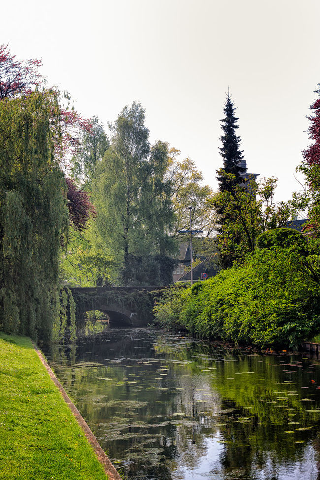 Little Bridge Over A Canal Beauty In Nature Canal Day Grass Green Green Color Growth Idyllic Landscape Lush Foliage Nature No People Non Urban Scene Non-urban Scene Outdoors Plant Reflection Remote Scenics Sky Standing Water Tranquil Scene Tranquility Tree Water