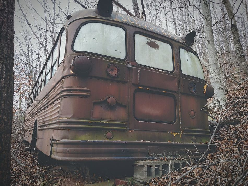 Old Schoolbus Rusty Rustygoodness Myperspective Beautyofdecay Interesting Exploringpaidoff EyeEm Best Shots Abandonedthings Forgottenabout Taking Photos Nature Fallen Leaves Check This Out Mobilephotography Westvirginia
