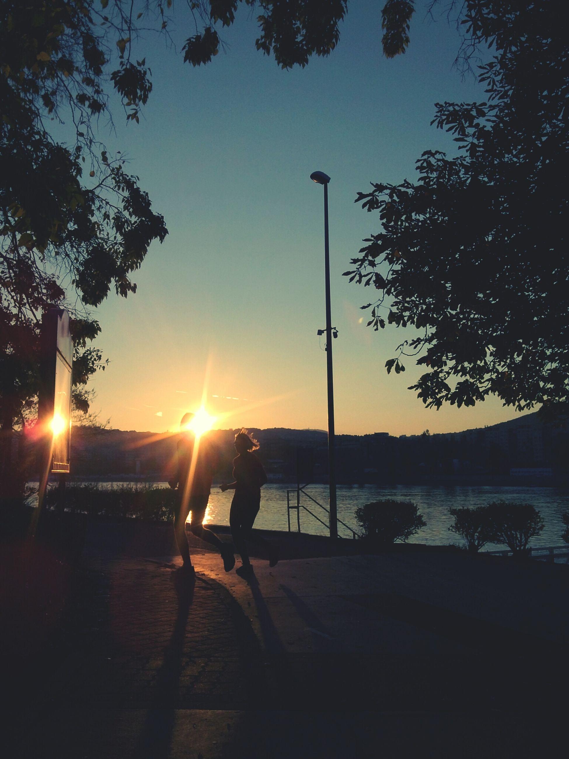 sun, sunset, tree, silhouette, sunlight, sunbeam, lens flare, street light, tranquility, clear sky, sky, tranquil scene, water, nature, beauty in nature, scenics, transportation, orange color, railing, outdoors