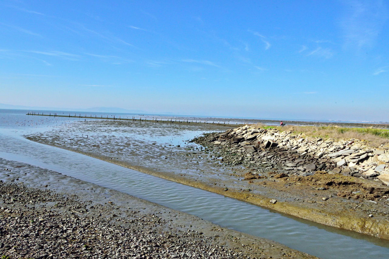 The Tide Rolls In 3 Hayward, Ca. Shore Low Tide Mudflats Water Pipeline Exposed Channel Bank Shoreline Rocks Returning Tide Water Flowing Woman Sitting On Bench Scenics Nature Beauty In Nature Nature_collection Landscape_Collection Lanscape Photography Inlets Landscape Landscape_lovers Horizon Over Water