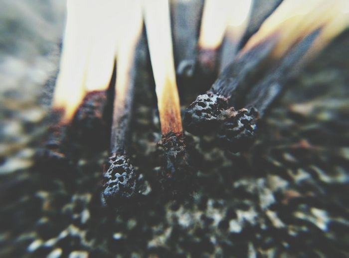 Matchstick Mathstick Burnt Burnt Stick Burnt Match Burnt Matches No People Inspired Inspirational Inspirations Independent  The Photojournalist - 2017 EyeEm Awards Getty Images half burnt