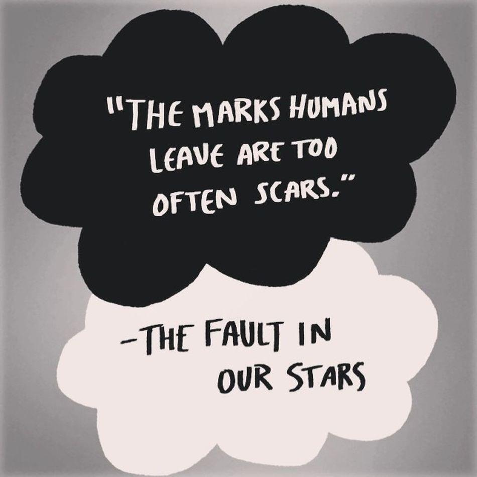Far too many scars caused by humans for my liking... Scars TFioS Secretsociety_123 Stop ana ednos ed hope dep sue f4f fff follow4follow followforfollow