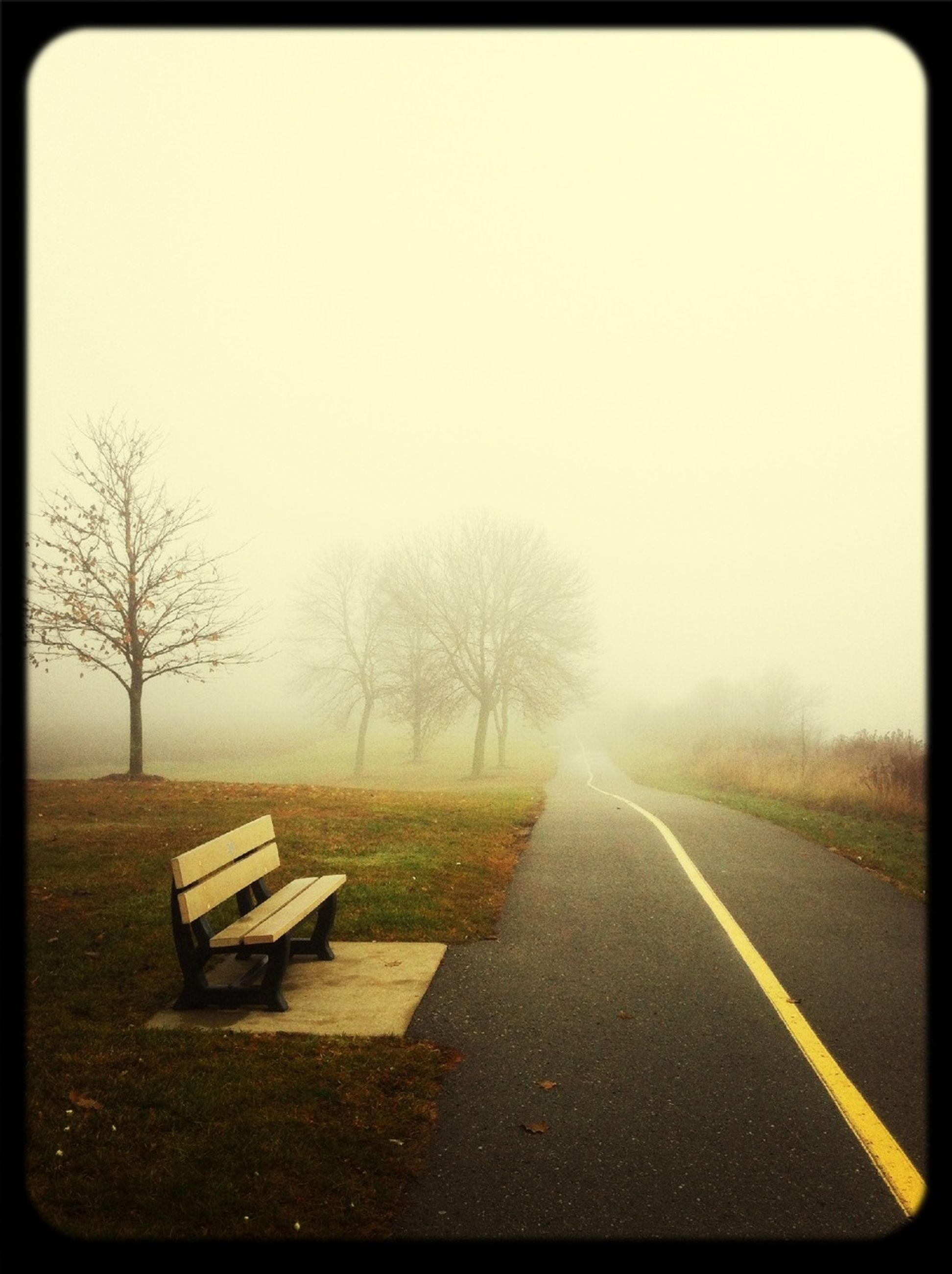 the way forward, transportation, diminishing perspective, road, tree, bare tree, vanishing point, tranquil scene, country road, tranquility, fog, transfer print, empty, auto post production filter, empty road, landscape, nature, field, road marking