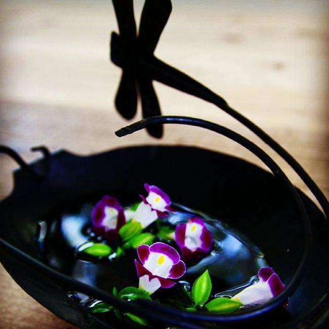 これ、蚊取り線香の入れ物なんですけど、お花入れたら雰囲気でました(*^▽^*) 蚊取り線香 Photo Japan Photooftheday webstagram 写真撮ってる人と繋がりたい flowers