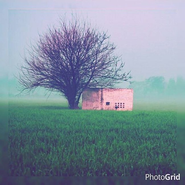 Winters 💜 Morningjog Ngma Shot4lava