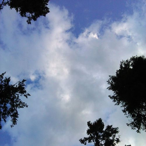 Sometimes it's just nice to lay in the grass and watch the clouds roll by Flathead Montana Cloudsrollby BigSkyCountry