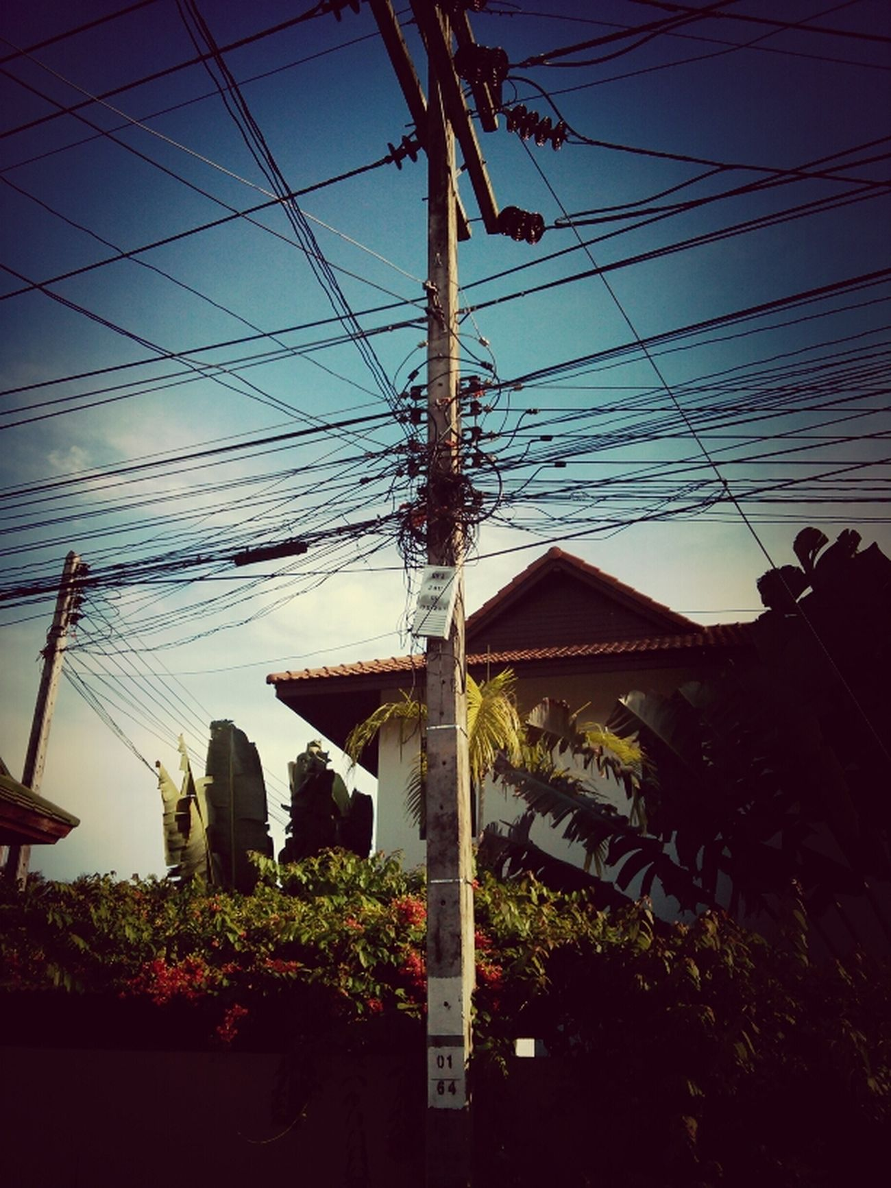 Cables Kus In Thailand
