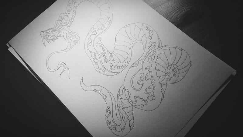 Study of a snake, 2014 Art My Work My Art Sketching Drawing Project Tattoo Inprogress Snake Shape