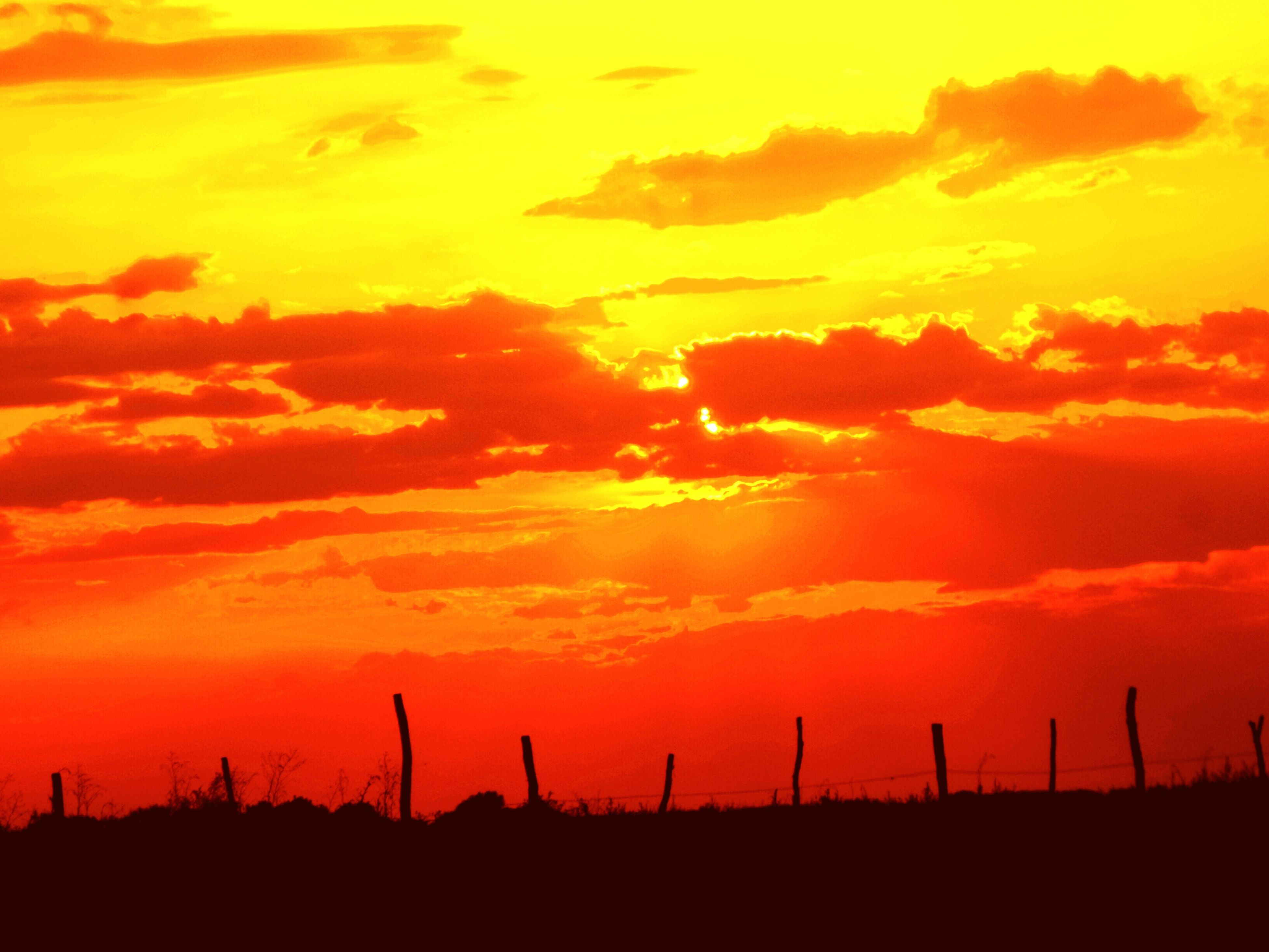 sunset, orange color, silhouette, sky, beauty in nature, scenics, tranquility, tranquil scene, landscape, nature, idyllic, dramatic sky, cloud - sky, field, windmill, alternative energy, cloud, environmental conservation, fuel and power generation, wind power