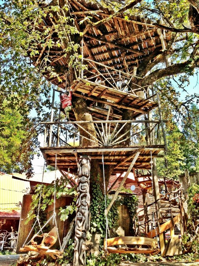 Now thats a treehouse!