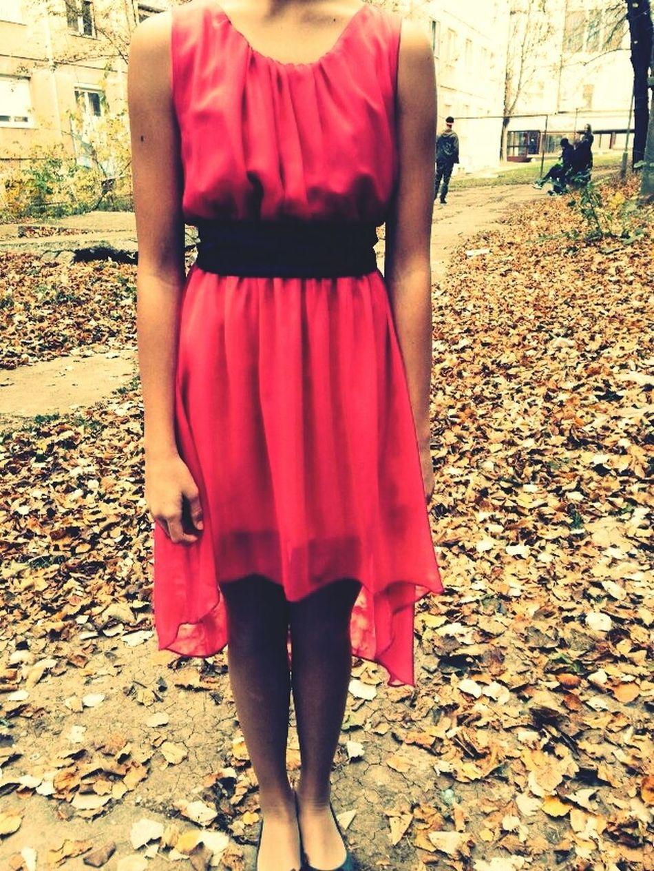Pink Autumn Sunnyday Tdn