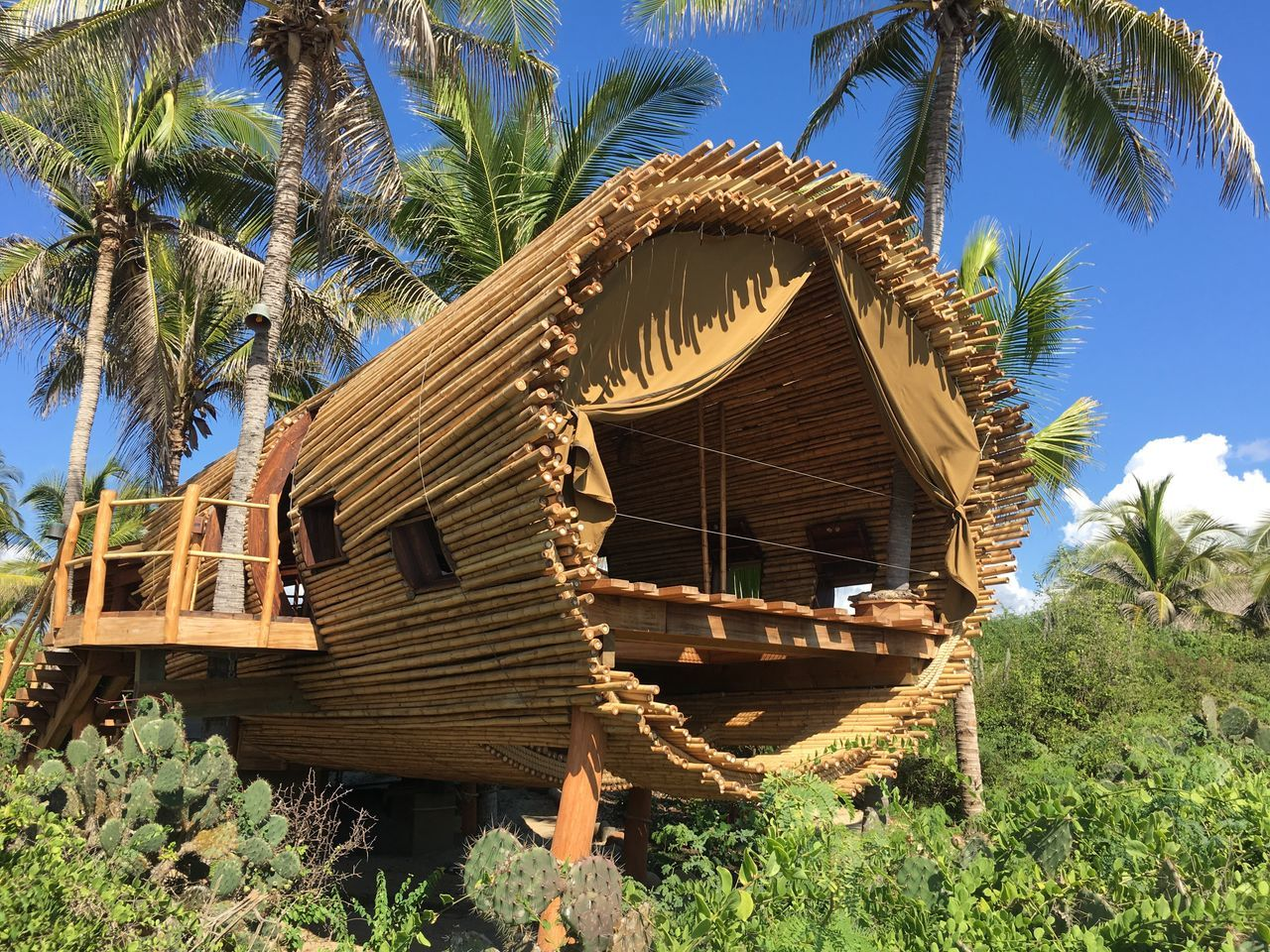 Treehouse Treehouseview Zihuatanejo Beachphotography Playa #beach Beach Photography Paradise Vacation Playa Ocean View Beach Mexico Fairytale  Vacations Beach Life Palm Trees Sun Eco Ecoresort Ecofriendly Ecosystem  Ecologic Ecological Ecology Ecol The Architect - 2017 EyeEm Awards The Great Outdoors - 2017 EyeEm Awards