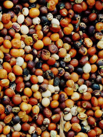 lentils Pulses Cereal Dried Lentils Flavour Round Beautiful Colors Of Life Noontime  Nature Home Mixed