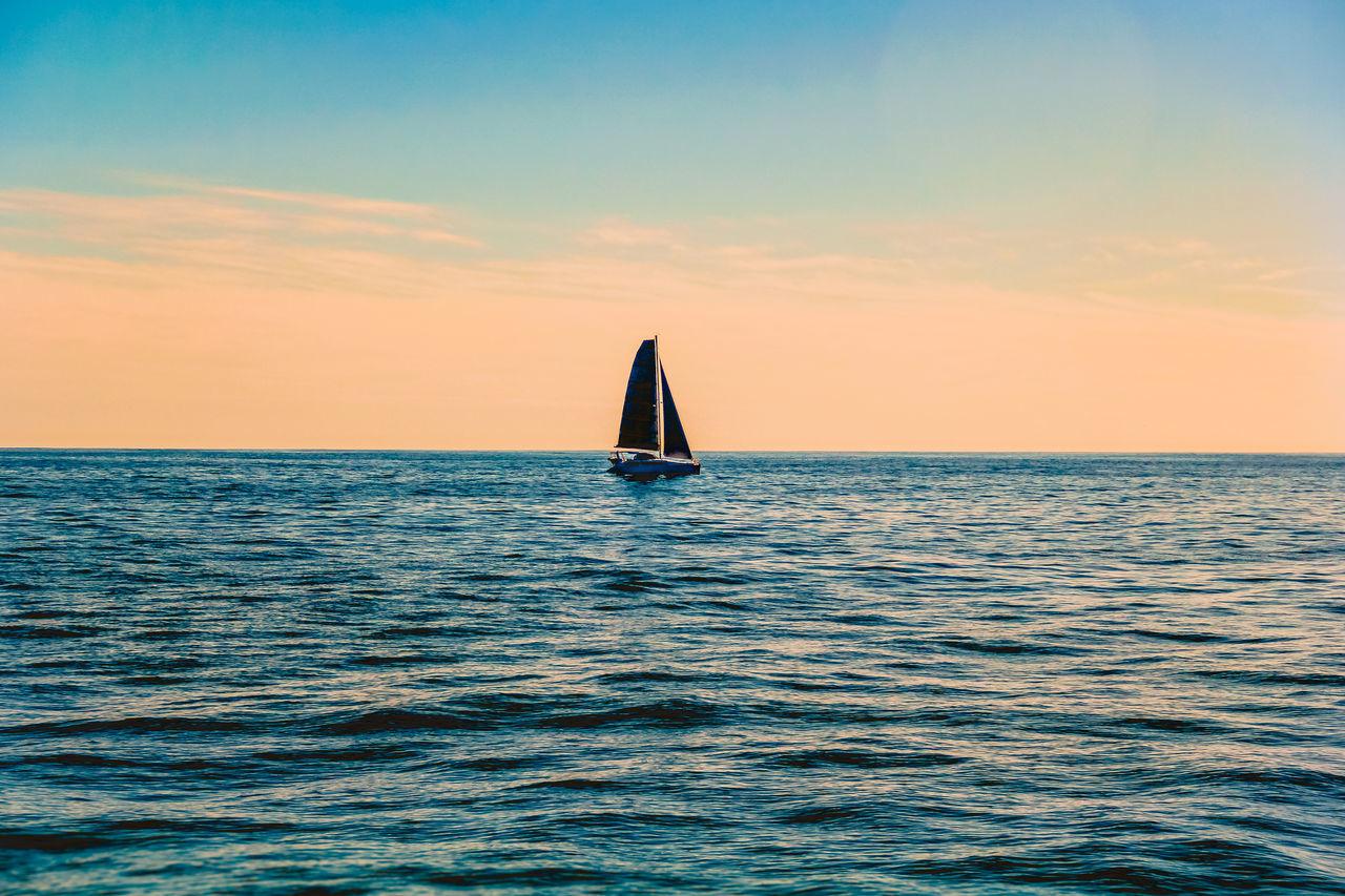 Beautiful stock photos of wal, sea, water, horizon over water, waterfront