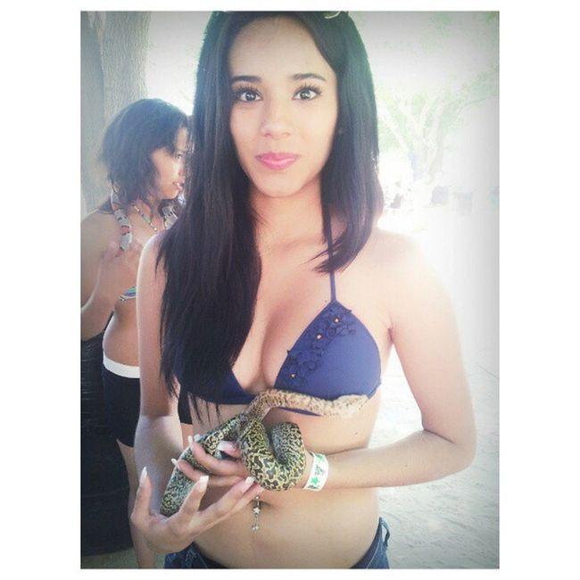 Lmao mi carilla x) Snake Nervousmuch Haha Idc ihadfun