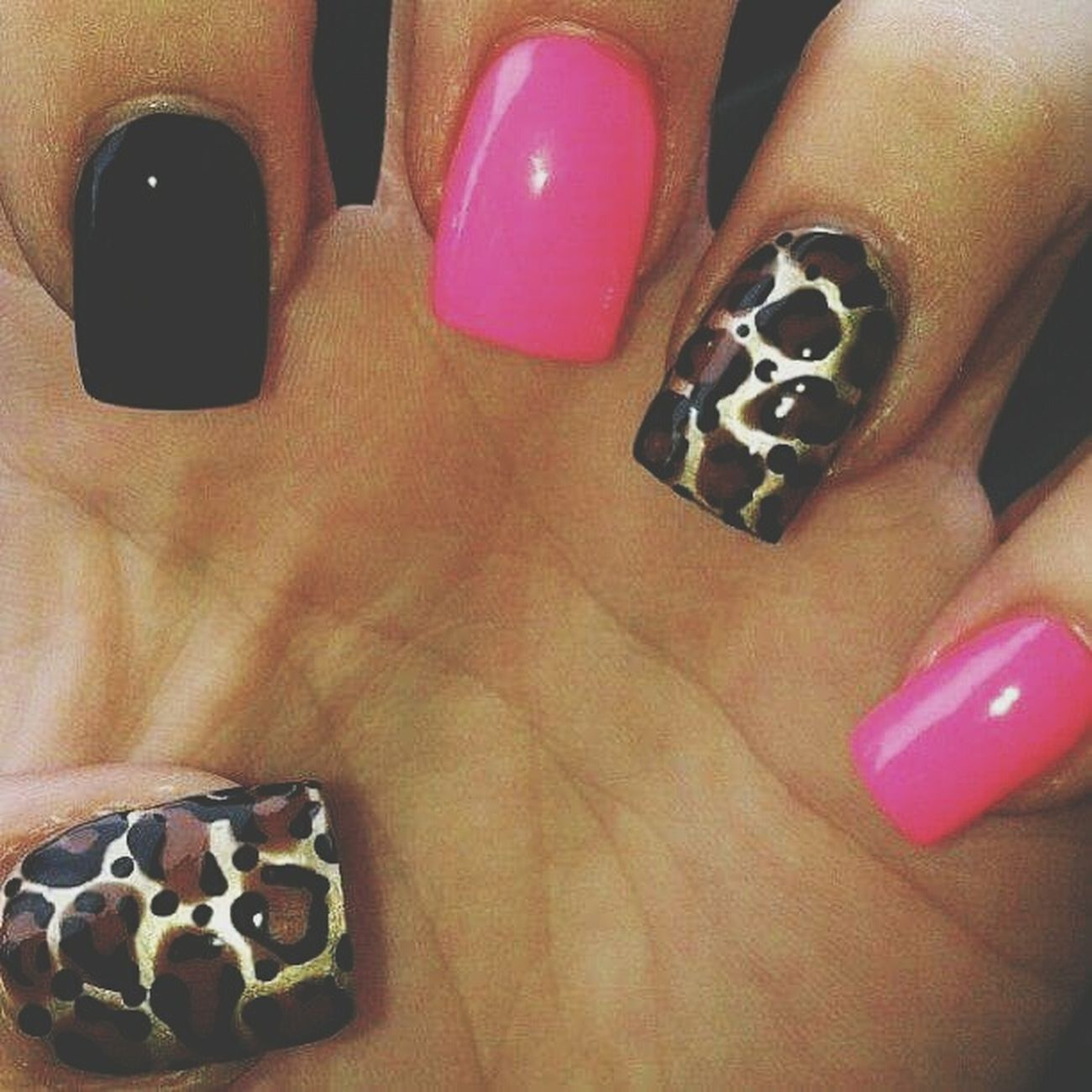 Nails <3 Lepordprint