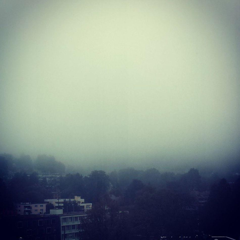 Where is the sun? Fog Wheater Whereisthesun Missing sun summer