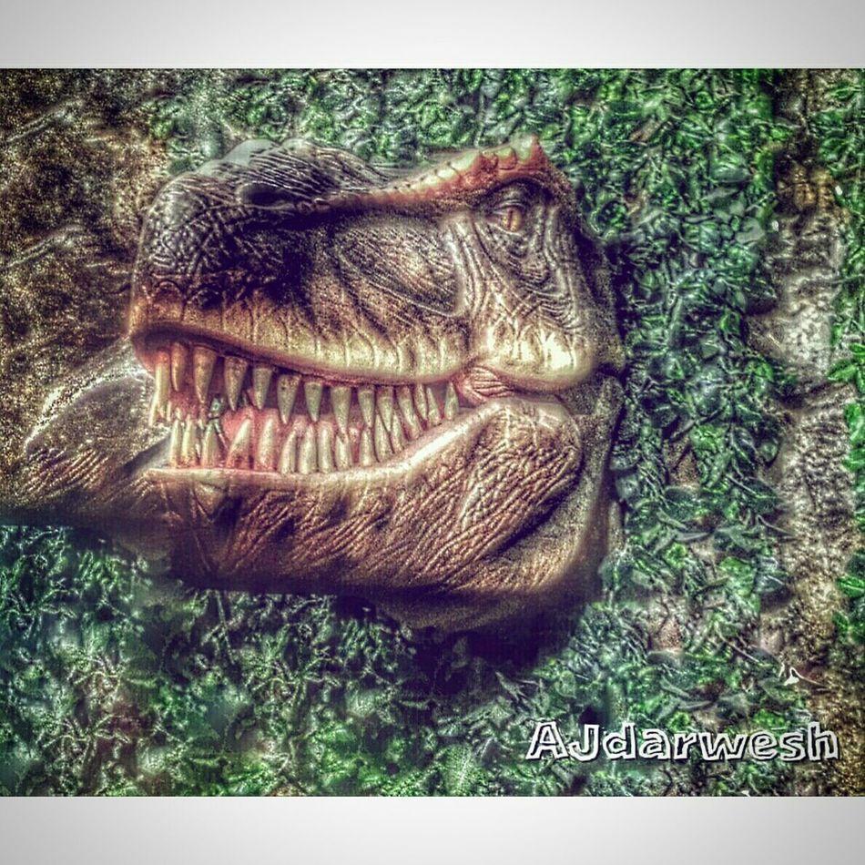 Sound Of Life Snapshots Of Life Popular Photos HDR Tirex Art Colorful Photo Nature Dinosaur