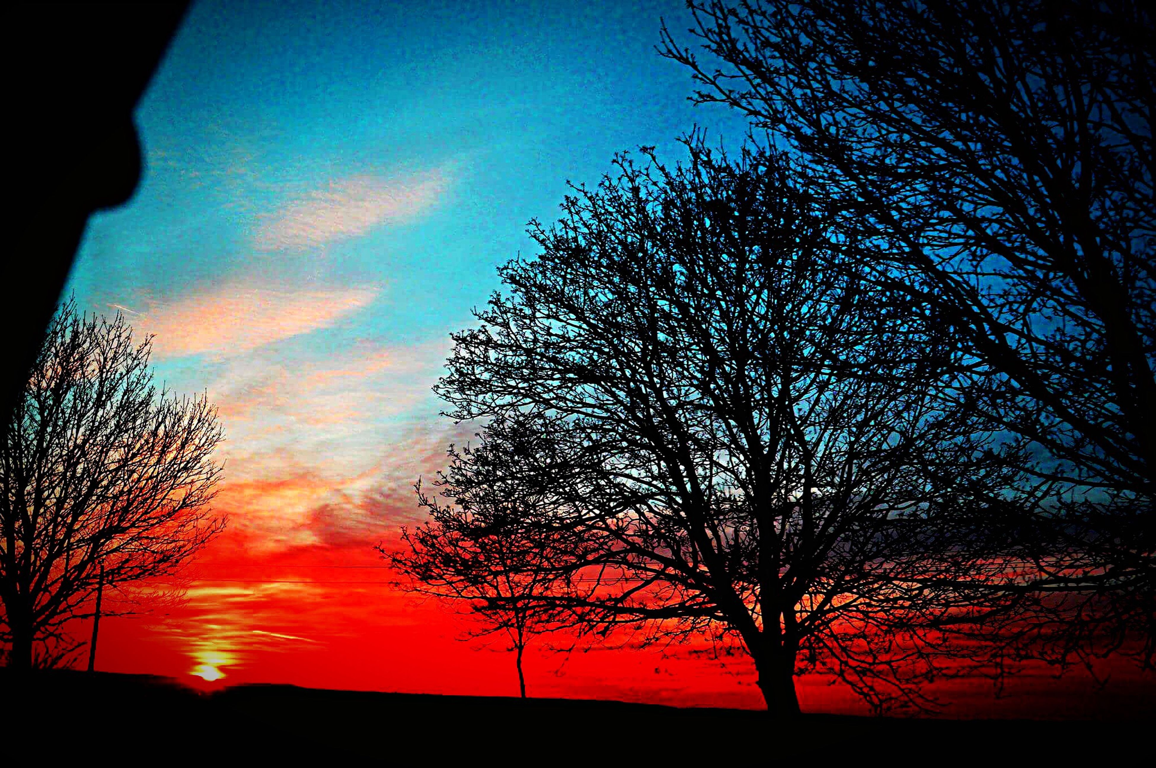 sunset, silhouette, tranquil scene, scenics, tree, tranquility, beauty in nature, bare tree, sky, landscape, branch, nature, orange color, dark, cloud - sky, field, outdoors, non-urban scene, blue, majestic, no people, dramatic sky, remote, atmospheric mood, moody sky, romantic sky