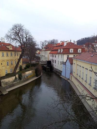 Prague Praha River River View Riverside Side Of The River View Of The Vltava Vltava VltavaRiver