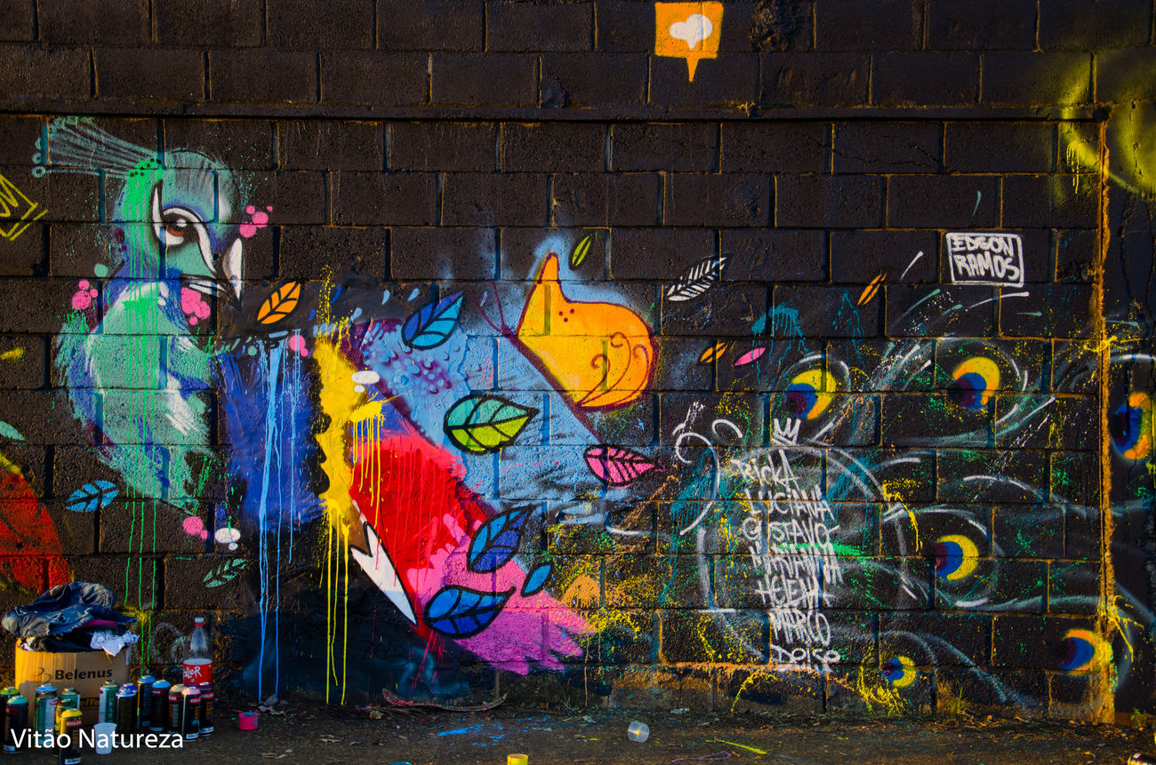 Graftti Street Art Creativity Multi Colored Documentaryphotography Victornatureza Olharnatural Fotodocumental Docmentaryphotografer Edsonramos Art165 Urbanarts Streetphotography Streetart