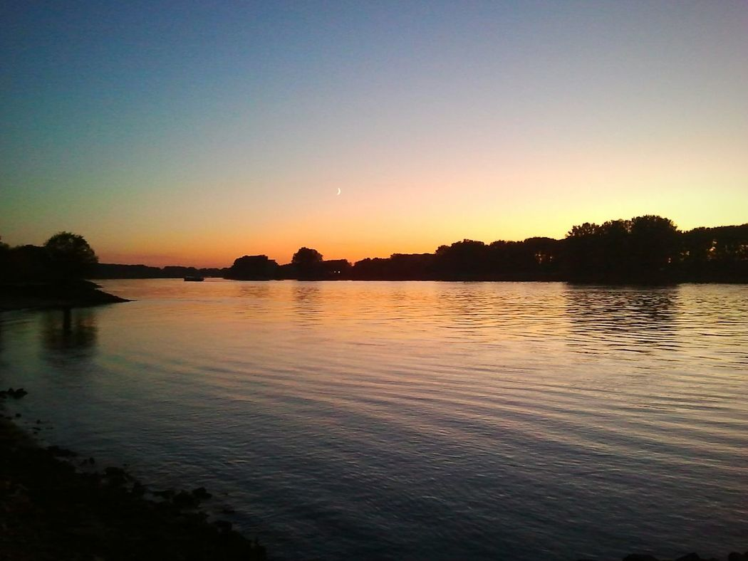 Rhine River Rhein Fluss River Sunset Moon Sonnenuntergang Mond Germany Gernsheim Riverside River View