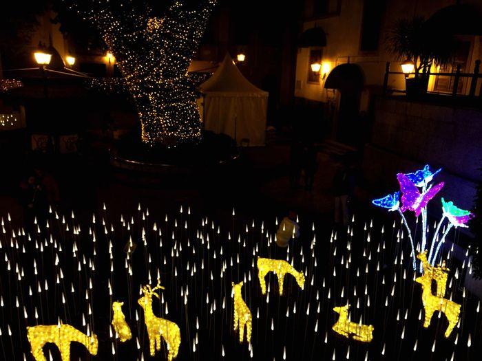 Christmas Lights Macau Light And Shadow Festival