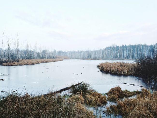 Frozen Lake EyeEm Best Shots