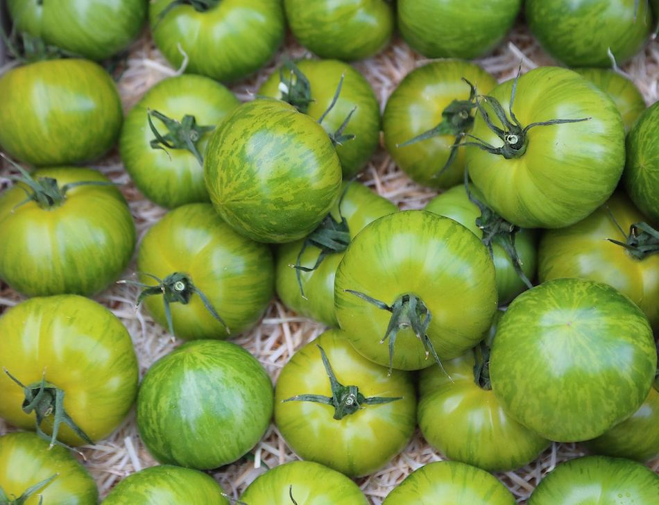 Freshness Healthy Eating Green Color Abundance Large Group Of Objects Full Frame Retail  No People Food Fruit Food And Drink Stack For Sale Vegetable Market Close-up Outdoors Market Stall Business Day Harvest Agriculture Green Color Tomato Green Tomatoes