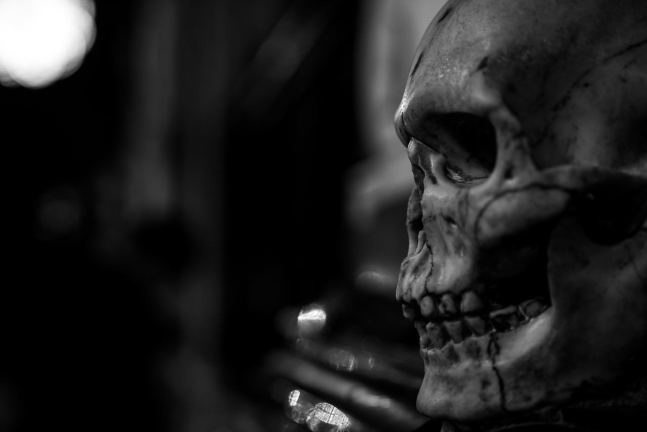 Staring. Human Representation Sculpture Close-up Human Skull Human Skeleton Skull 😚 Cropped Roma Rome Europe Rome Italy Horror Bella Italia Italia Italy❤️ Black & White Blackandwhite Black And White Fortheloveofblackandwhite Marble Macabre Skulls And Bones Church Basilica