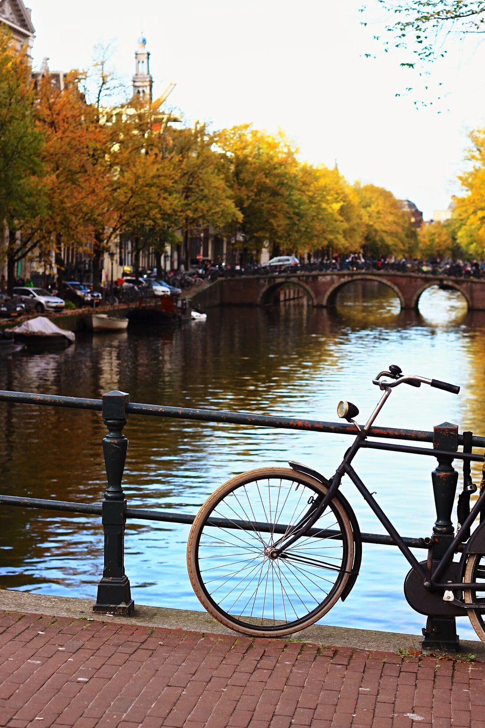 Amsterdam Water River Bicycle Reflection Tree Travel Destinations Amsterdam The Netherlands Spree EyeEmNewHere City Nature Sky Day
