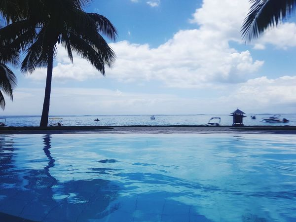 Sea Beach Tree Blue Cloud - Sky Tropical Climate Water Tranquility Palm Tree Tranquil Scene Swimming